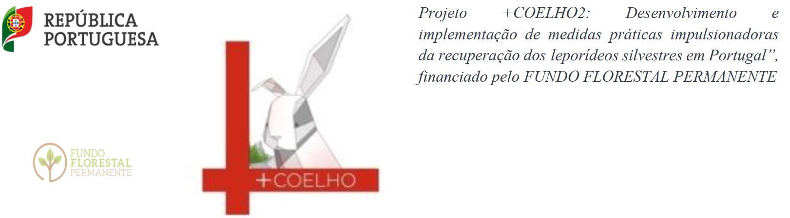 +coelho12