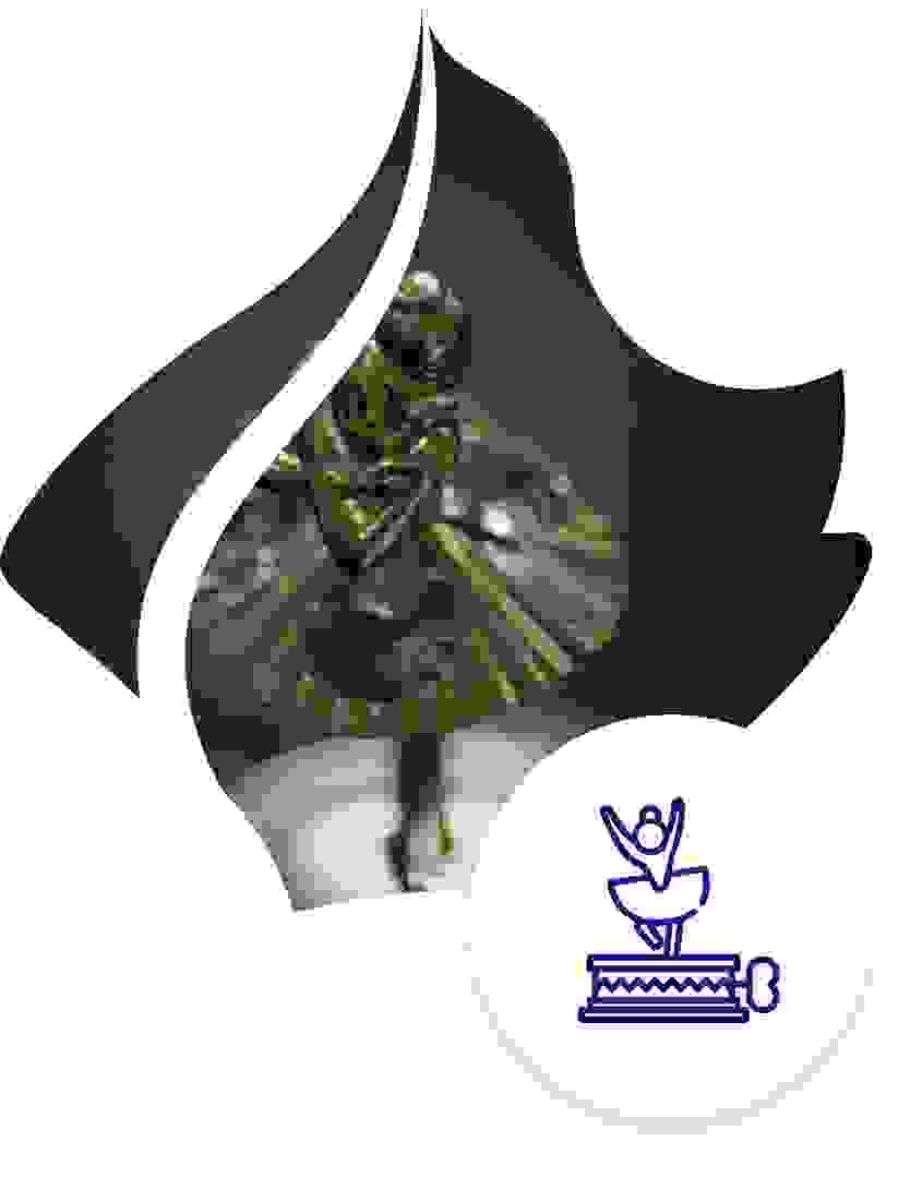 img-ballerina