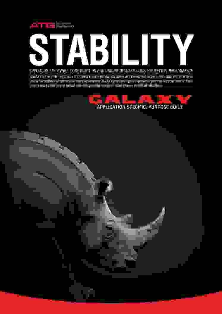 Estabilidade Rinoceronte