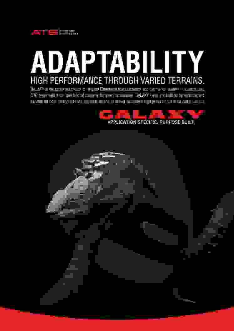 Adaptação Camaleão