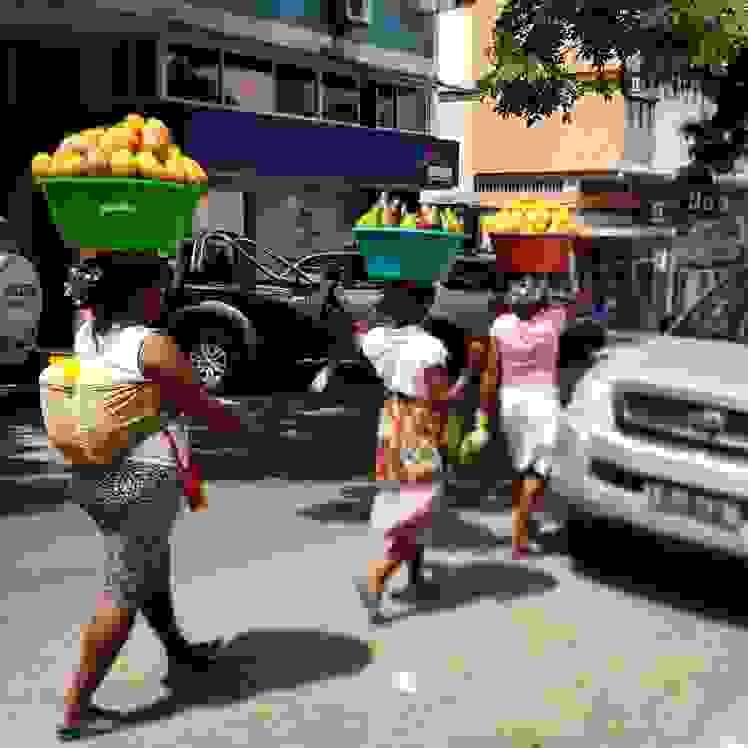 Zungueiras em Angola (Foto: Cátia Monteiro)