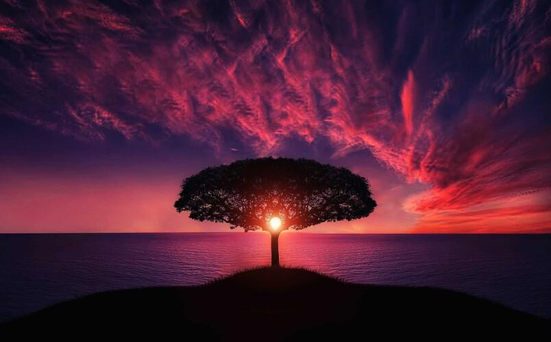 o-guia-de-mindfulness-para-uma-vida-mais-plena