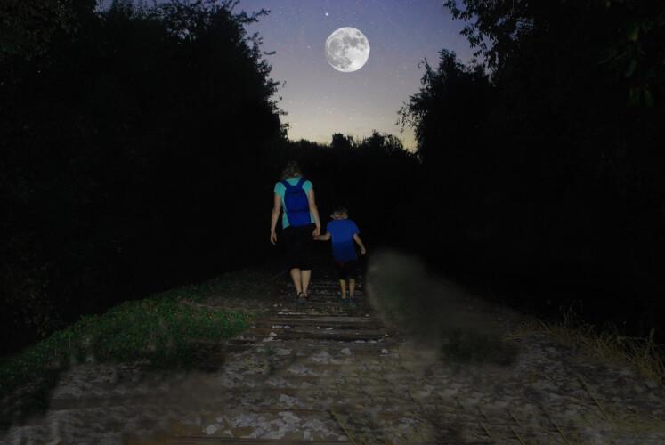 a-caminhada-de-maio-ira-percorrer-quintas-e-parques-do-concelho