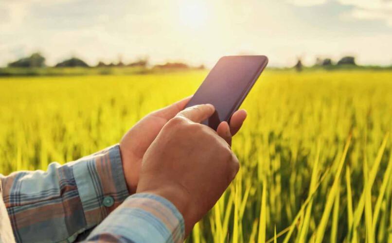 app-portuguesa-alerta-agricultores-sobre-mudancas-climaticas