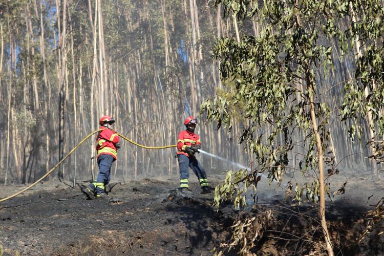 incendios-meios-de-combate-reduzidos-a-partir-de-quarta-feira