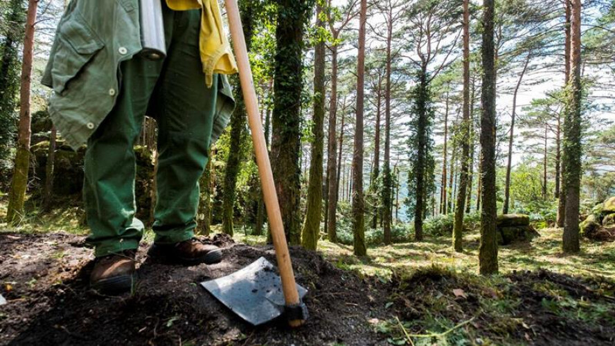 do-geres-para-o-pais-agentes-especiais-vao-proteger-floresta