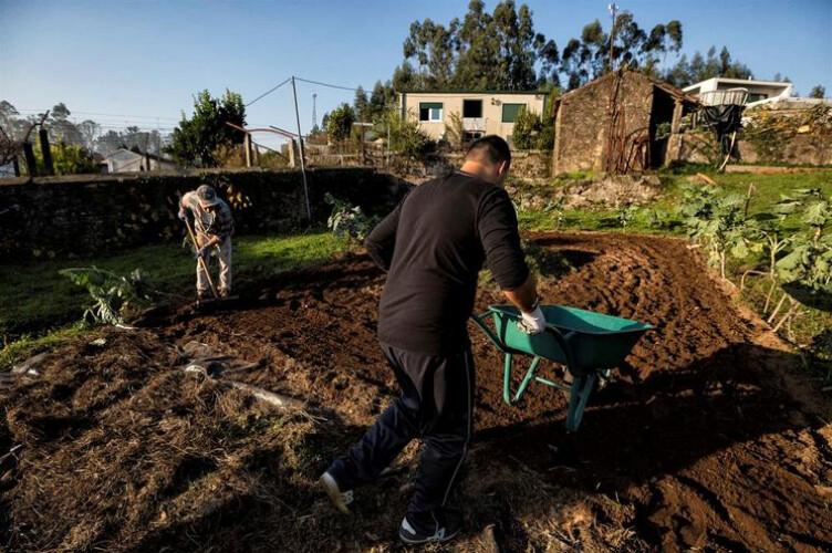 e-preciso-reaver-dois-milhoes-de-euros-dados-em-ajudas-a-agricultores