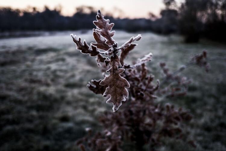 semana-comeca-com-geada-e-temperaturas-negativas