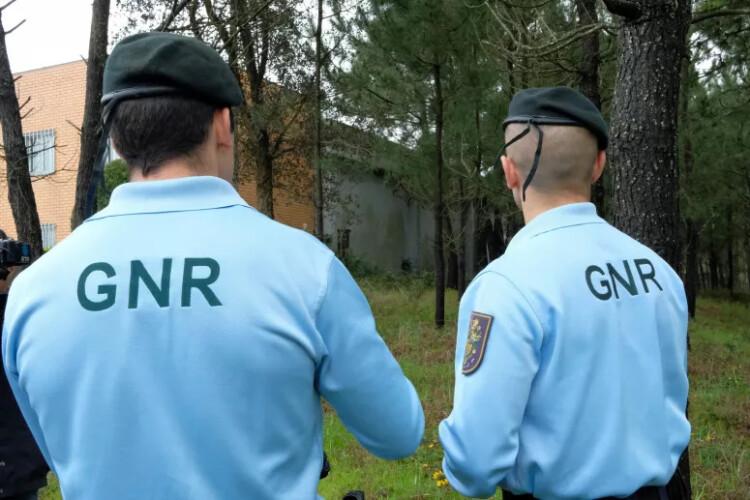 gnr-intensifica-patrulhamento-nas-exploracoes-agricolas