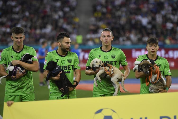 jogadores-de-futebol-romenos-vao-entrar-em-campo-com-caes-abandonados