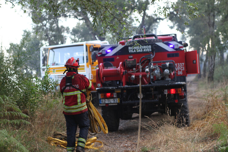 mais-de-24000-hectares-arderam-nos-primeiros-sete-meses-do-ano