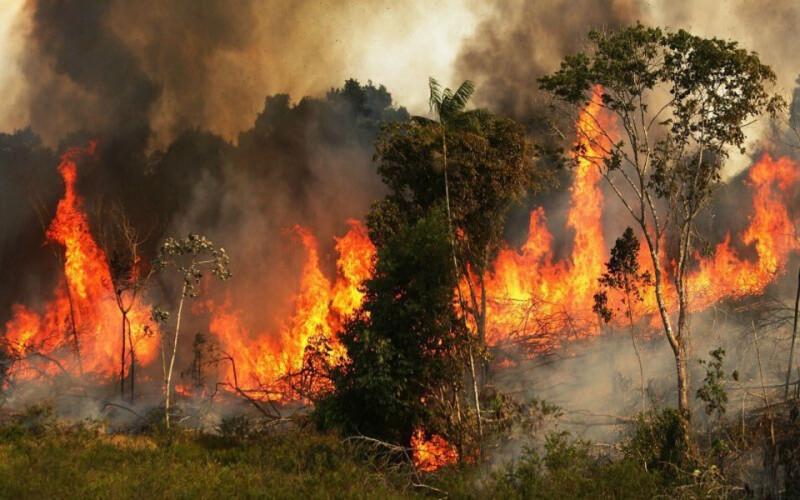 amazonia-esta-a-arder-a-um-ritmo-assustador