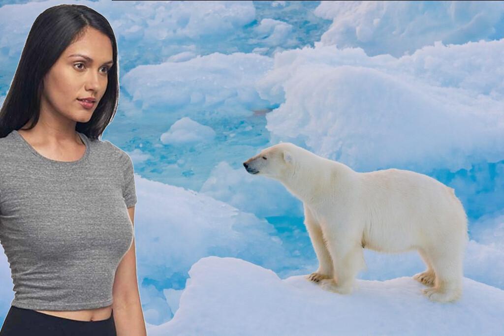 5 - Tornar-se amigo de um urso polar