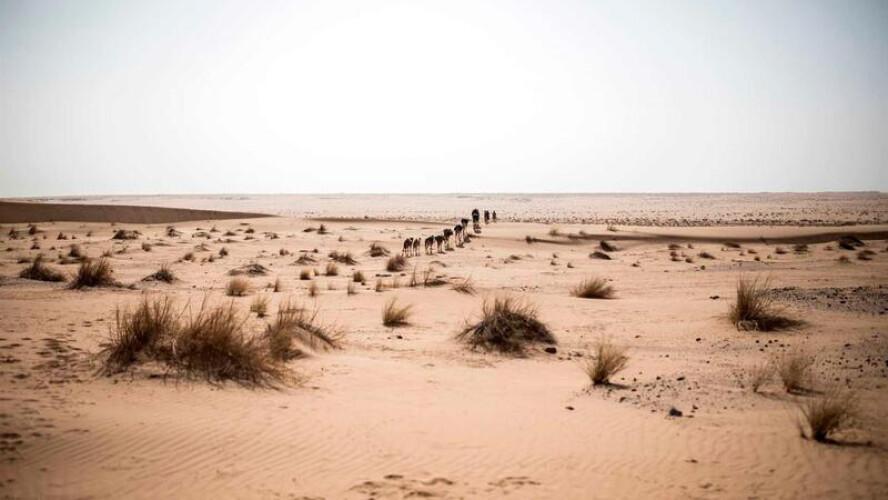 poeiras-do-deserto-do-saara-atingem-terca-feira-a-peninsula-iberica