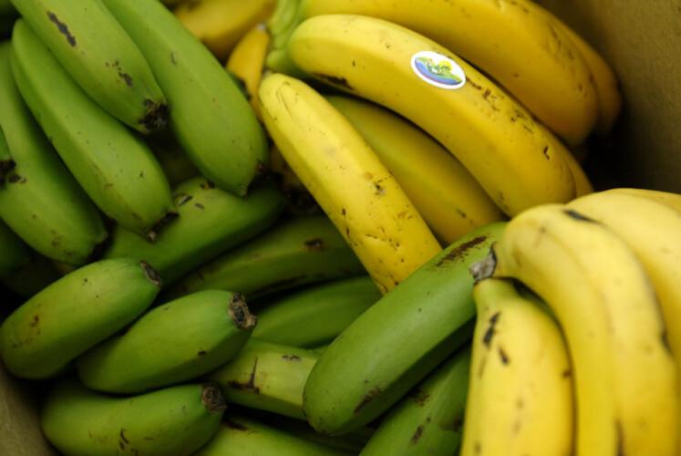 bananas-ou-bebidas-energeticas-para-treinar