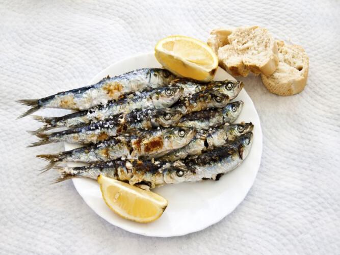 as-regras-de-ouro-para-termos-as-melhores-sardinhas-na-brasa