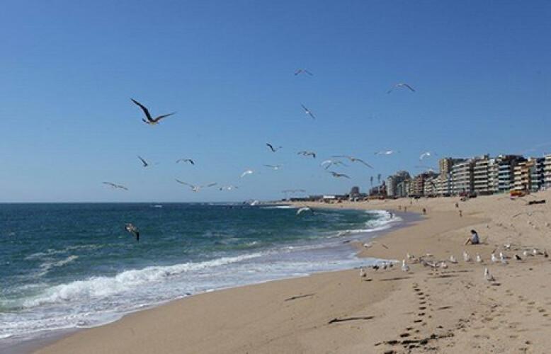 governo-pondera-instalar-semaforos-nas-praias