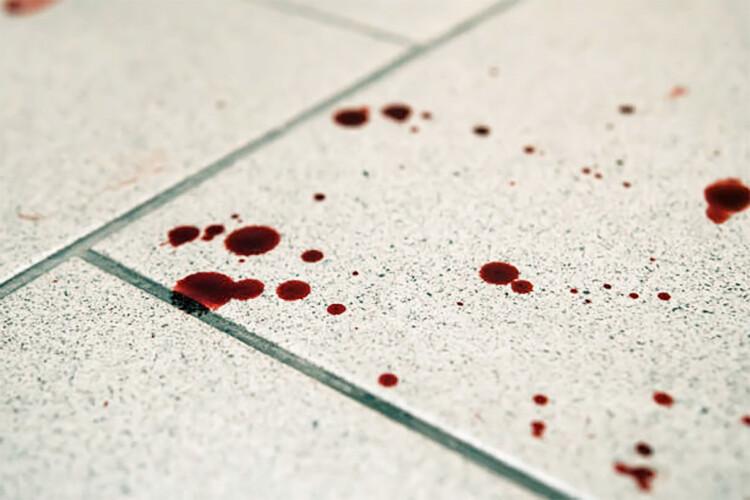 avense-julgado-por-violencia-domestica