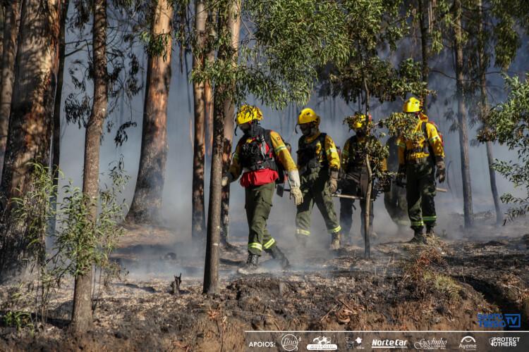 incendios-portugal-em-situacao-de-alerta-ate-domingo