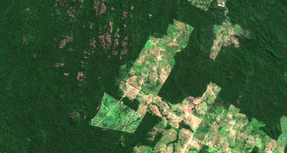 desflorestacao-na-amazonia-aumentou-28-nos-ultimos-doze-meses