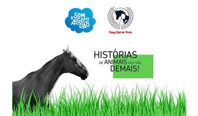 Pony Club promove sessão de histórias