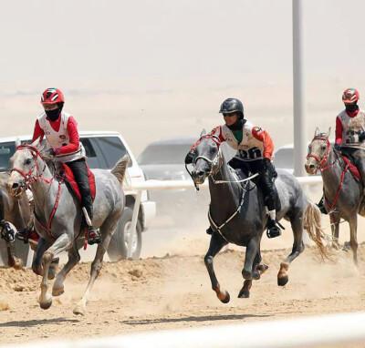Cavalo de criação nacional vence nos EAU