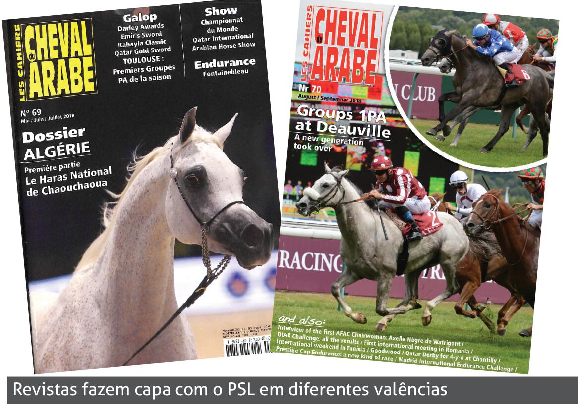 Foto revistas
