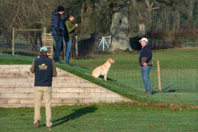 Já se trabalha para os Badminton Horse Trials