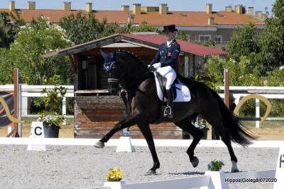 Dias de competição quentes na capital do cavalo