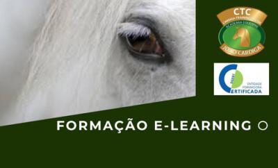 E-Learning Pedagogia-Estratégias de acção
