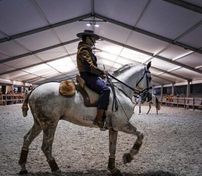 Espectáculos equestres na Agrovouga