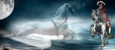 «A noite mágica do cavalo» online