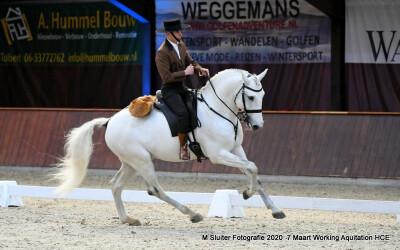 Marco Boavista em destaque na Holanda