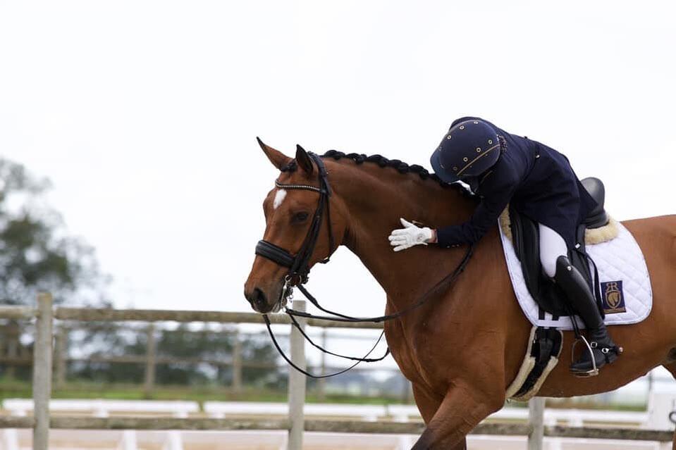 foto de centro equestre joão cardiga
