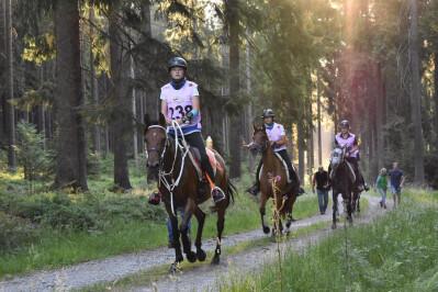 Cavalo da propriedade de André Caeiro conquista bronze na Bélgica