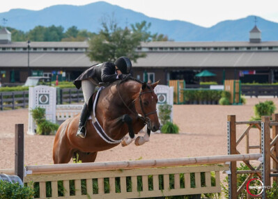 Tryon International Equestrian Center vai reabrir sem público