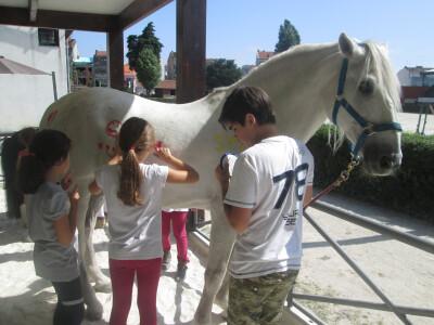 Carnaval no Pony Club do Porto