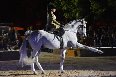Festival Equestre em Alenquer