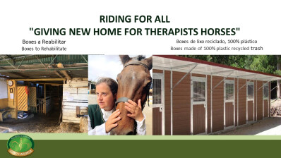 Os cavalos precisam do seu apoio no #GivingTuesday