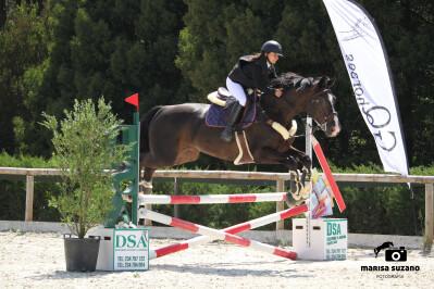 GQ Horses realizou CSN
