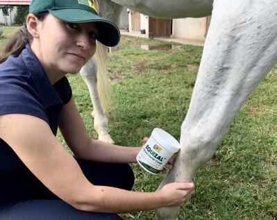 Proteja o seu cavalo de arestins, feridas e dermatites com Equizal
