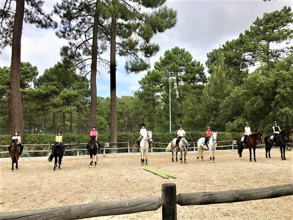 ninfa academia equestre
