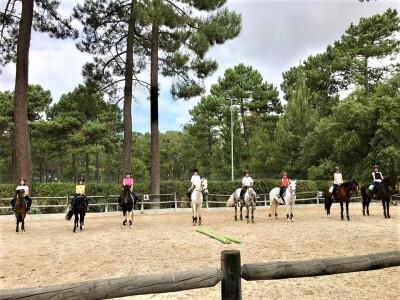 A Ninfa - Academia Equestre vai dar início a aulas online