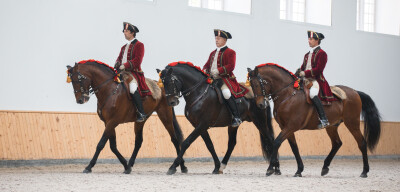 Escolas de Saumur, Jerez e Portugal juntas em espectáculo