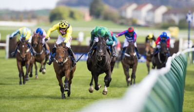 C. E. da Maia perfila-se como centro de corridas de cavalos para 2018
