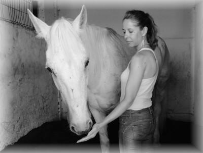 Terapia Reiki na Equitação