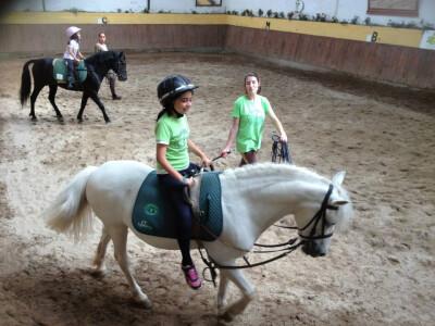 Uma semana #BEACTIVE5 com a Equitação para Todos