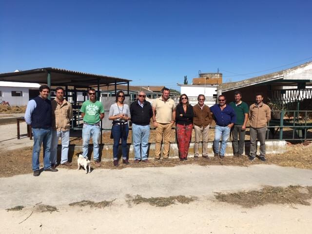 5.ª admissão de Reprodutores do Cavalo de Raça Luso-Árabe