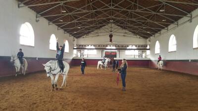 ESAC promove Jornadas Equestres
