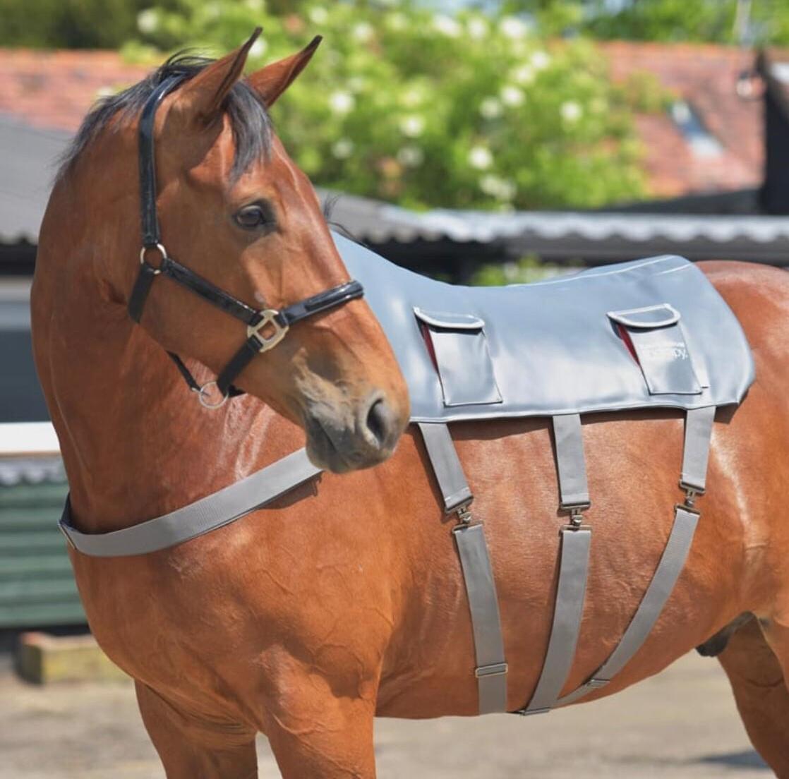 cavalo com manta de massagem (Equistore)